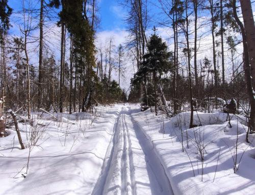 Лыжное 8 марта